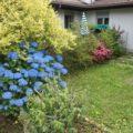 (Italiano) Bilocale arredato con giardino
